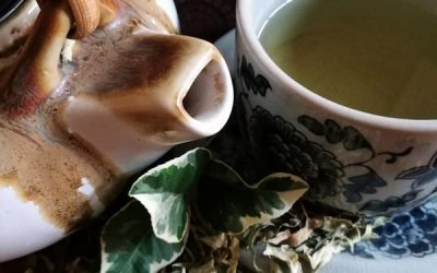 Amazing Lemon Leaf Tea: New on the Menu!!!